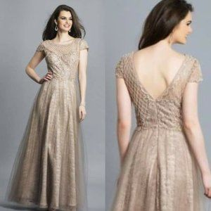NWT Dave Johnny Taupe Lace Beaded Tulle Gown M